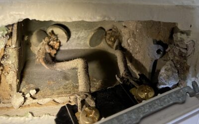 The Risk of Knob and Tube Wiring in a Home