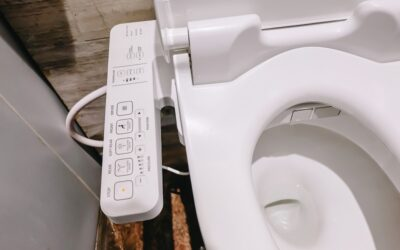 Why an Electronic Bidet is a Great Investment